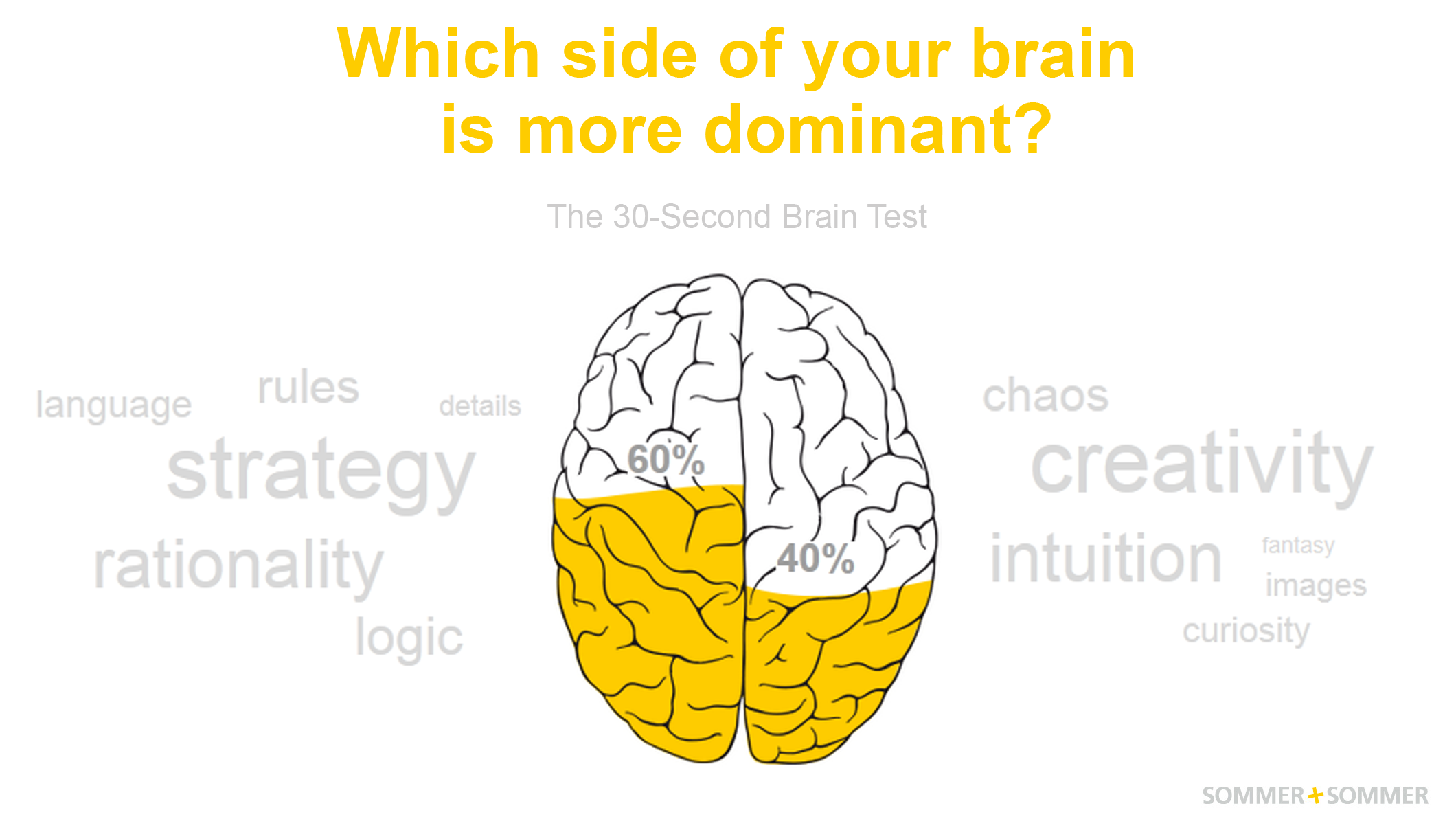 Right Brained Left Take The Brain Test Simple Diagram Clipart Best